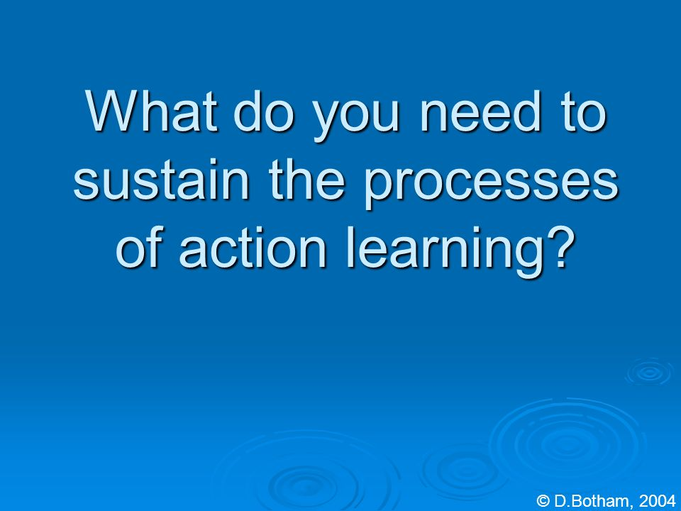 What do you need to sustain the processes of action learning © D.Botham, 2004