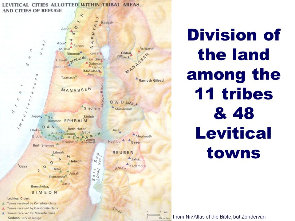 9 Division of the land among the 11 tribes & 48 Levitical towns From Niv Atlas of the Bible, but Zondervan