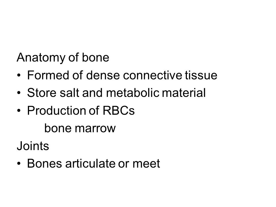 Anatomy of bone Formed of dense connective tissue Store salt and metabolic material Production of RBCs bone marrow Joints Bones articulate or meet