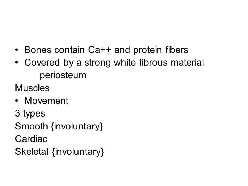 Bones contain Ca++ and protein fibers Covered by a strong white fibrous material periosteum Muscles Movement 3 types Smooth {involuntary} Cardiac Skeletal {involuntary}