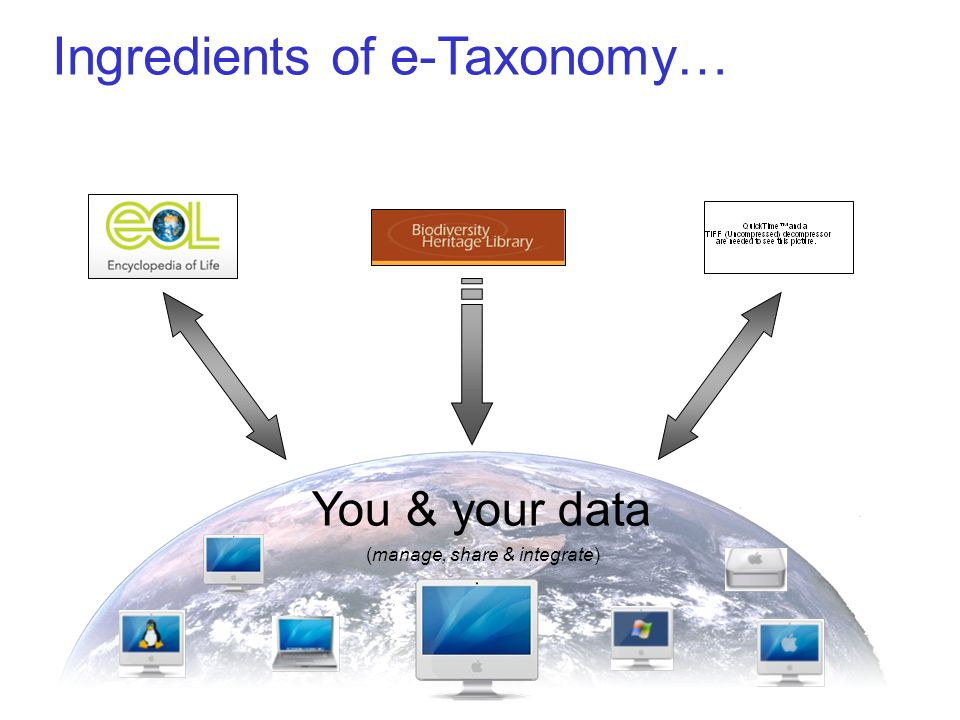 Ingredients of e-Taxonomy… You & your data (manage, share & integrate)