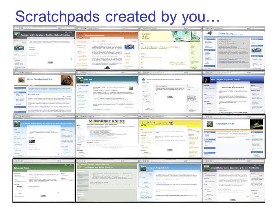 Scratchpads created by you…