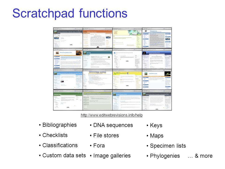 Scratchpad functions … & more Bibliographies Checklists Classifications Custom data sets DNA sequences File stores Fora Image galleries Keys Maps Specimen lists Phylogenies http://www.editwebrevisions.info/help