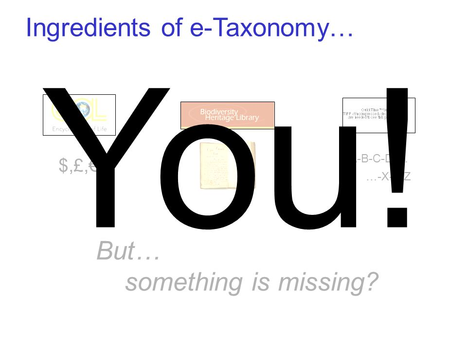 Ingredients of e-Taxonomy… $,£, A-B-C-D-… …-X-Y-Z But… something is missing You!