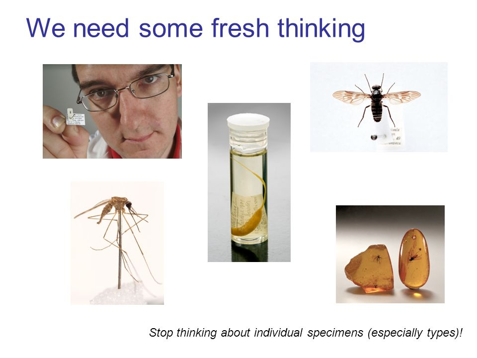 We need some fresh thinking Stop thinking about individual specimens (especially types)!