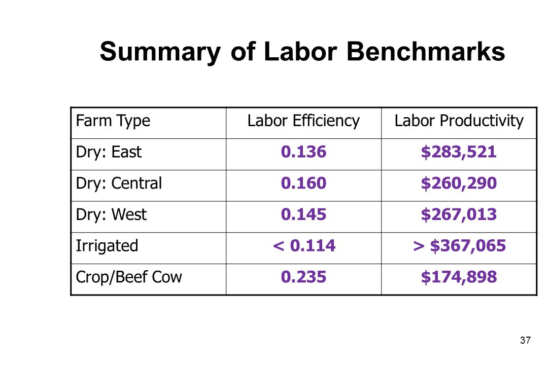Summary of Labor Benchmarks Farm TypeLabor EfficiencyLabor Productivity Dry: East0.136$283,521 Dry: Central0.160$260,290 Dry: West0.145$267,013 Irrigated< 0.114> $367,065 Crop/Beef Cow0.235$174,898 37