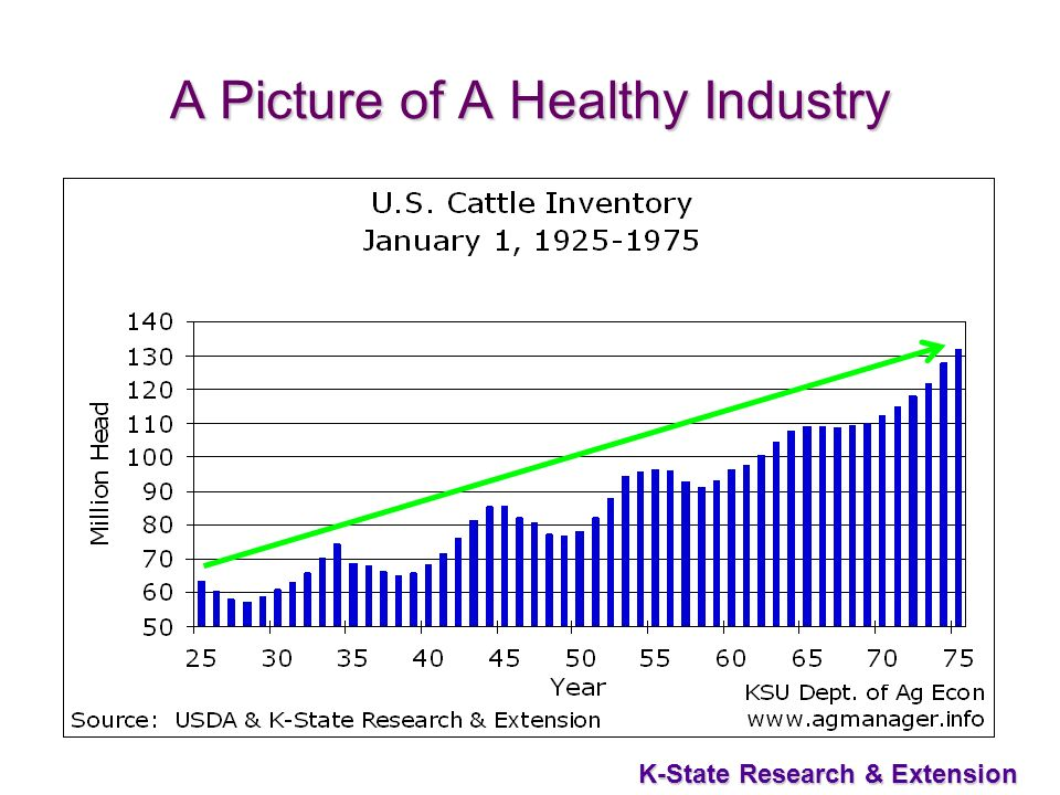4 K-State Research & Extension A Picture of A Healthy Industry