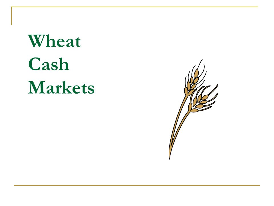 Wheat Cash Markets