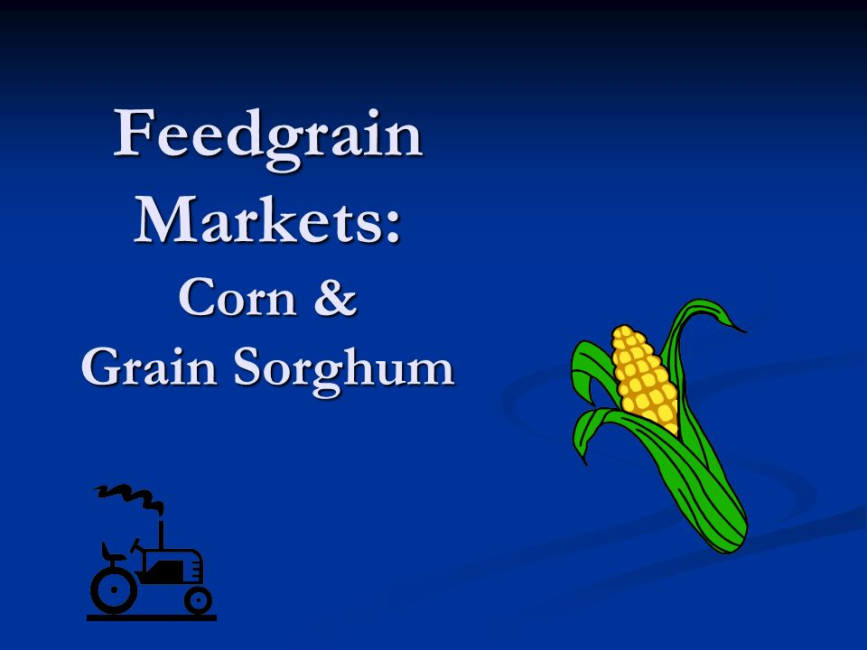 Feedgrain Markets: Corn & Grain Sorghum