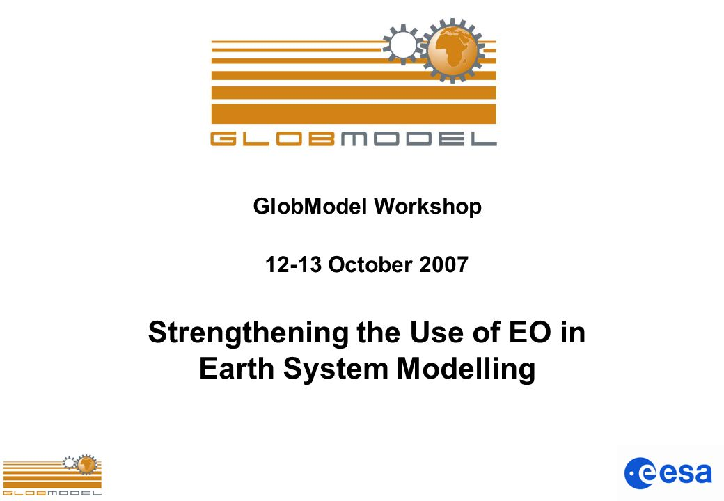GlobModel Workshop 12-13 October 2007 Strengthening the Use of EO in Earth System Modelling