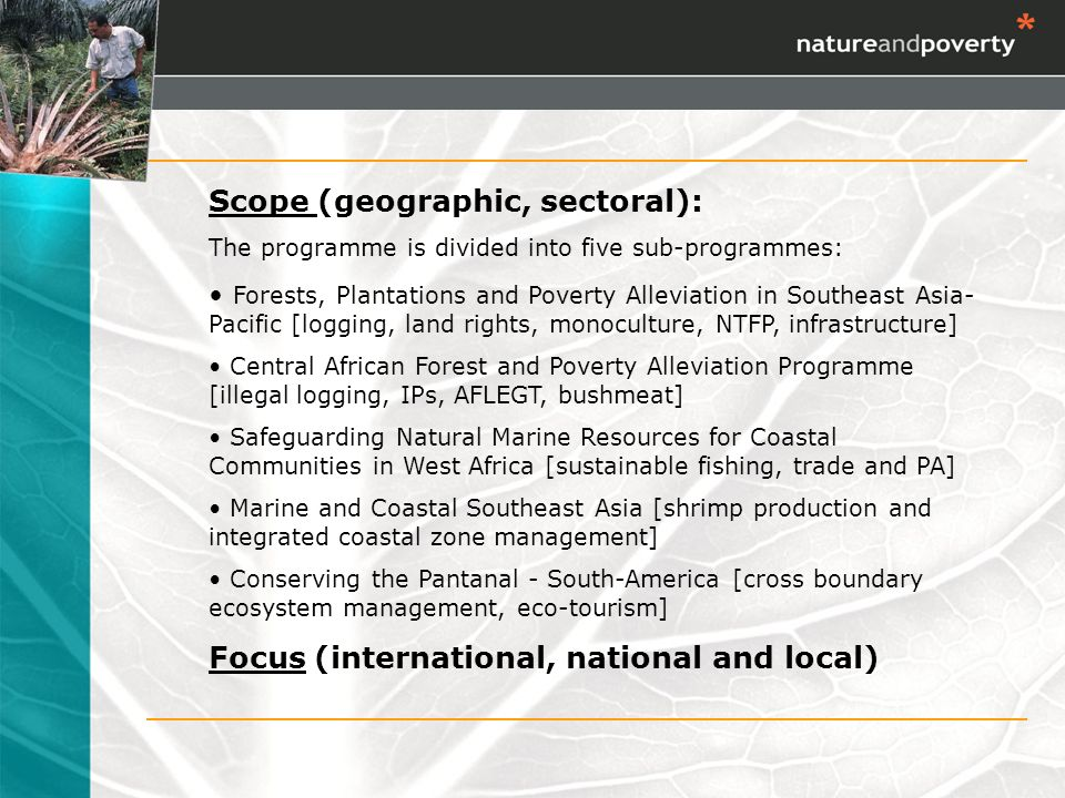 Scope (geographic, sectoral): The programme is divided into five sub-programmes: Forests, Plantations and Poverty Alleviation in Southeast Asia- Pacific [logging, land rights, monoculture, NTFP, infrastructure] Central African Forest and Poverty Alleviation Programme [illegal logging, IPs, AFLEGT, bushmeat] Safeguarding Natural Marine Resources for Coastal Communities in West Africa [sustainable fishing, trade and PA] Marine and Coastal Southeast Asia [shrimp production and integrated coastal zone management] Conserving the Pantanal - South-America [cross boundary ecosystem management, eco-tourism] Focus (international, national and local)