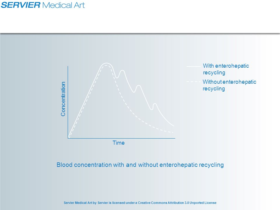 Servier Medical Art by Servier is licensed under a Creative Commons Attribution 3.0 Unported License Blood concentration with and without enterohepatic recycling Time Concentration With enterohepatic recycling Without enterohepatic recycling