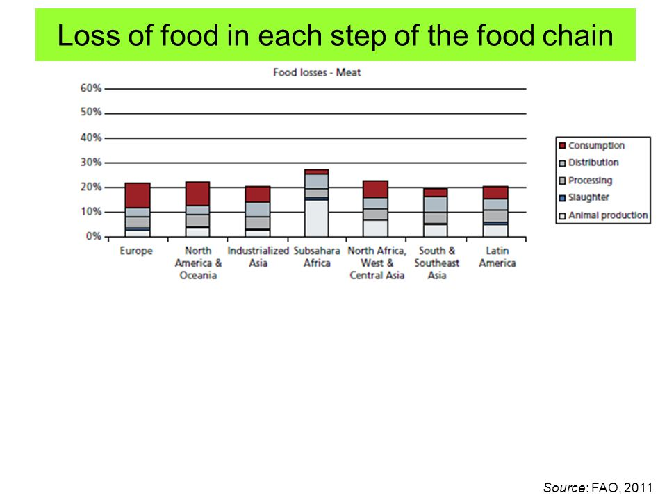 Loss of food in each step of the food chain Source: FAO, 2011