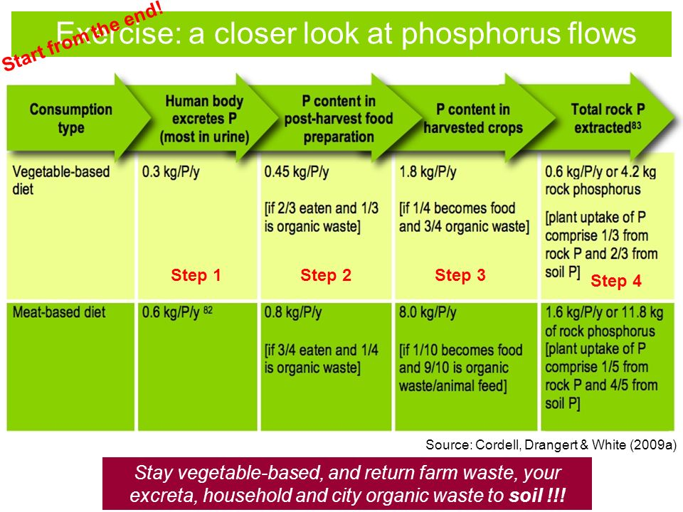 Exercise: a closer look at phosphorus flows Start from the end.