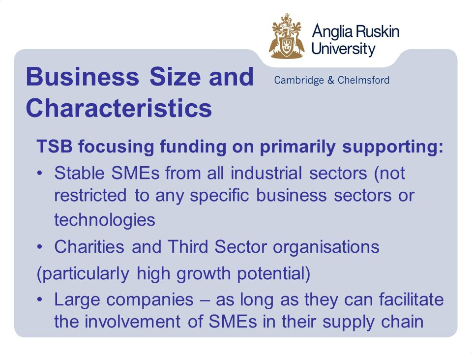 Business Size and Characteristics TSB focusing funding on primarily supporting: Stable SMEs from all industrial sectors (not restricted to any specific business sectors or technologies Charities and Third Sector organisations (particularly high growth potential) Large companies – as long as they can facilitate the involvement of SMEs in their supply chain