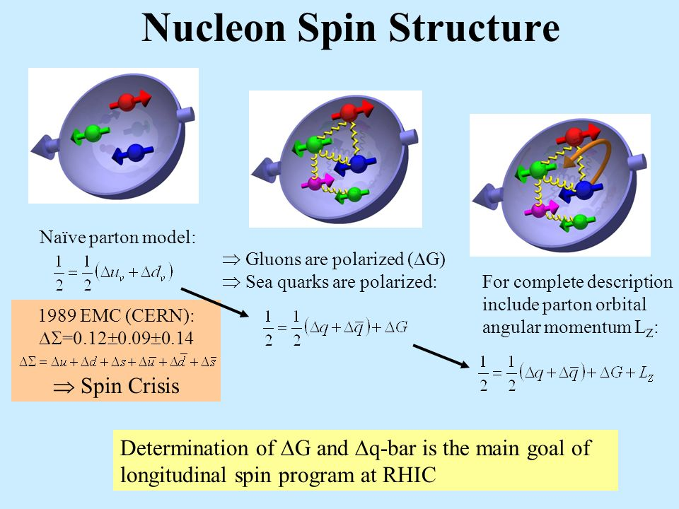 Nucleon Spin Structure Naïve parton model: 1989 EMC (CERN): =0.12 0.09 0.14 Spin Crisis Determination of G and q-bar is the main goal of longitudinal spin program at RHIC Gluons are polarized ( G) Sea quarks are polarized: For complete description include parton orbital angular momentum L Z :