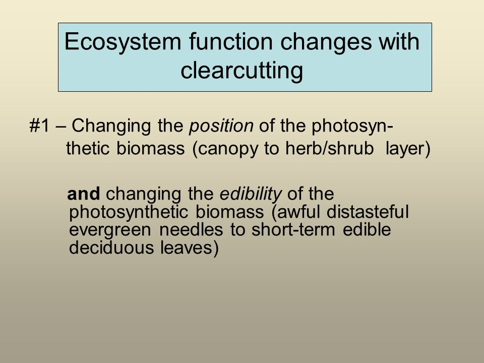 Ecosystem function changes with clearcutting #1 – Changing the position of the photosyn- thetic biomass (canopy to herb/shrub layer) and changing the edibility of the photosynthetic biomass (awful distasteful evergreen needles to short-term edible deciduous leaves)
