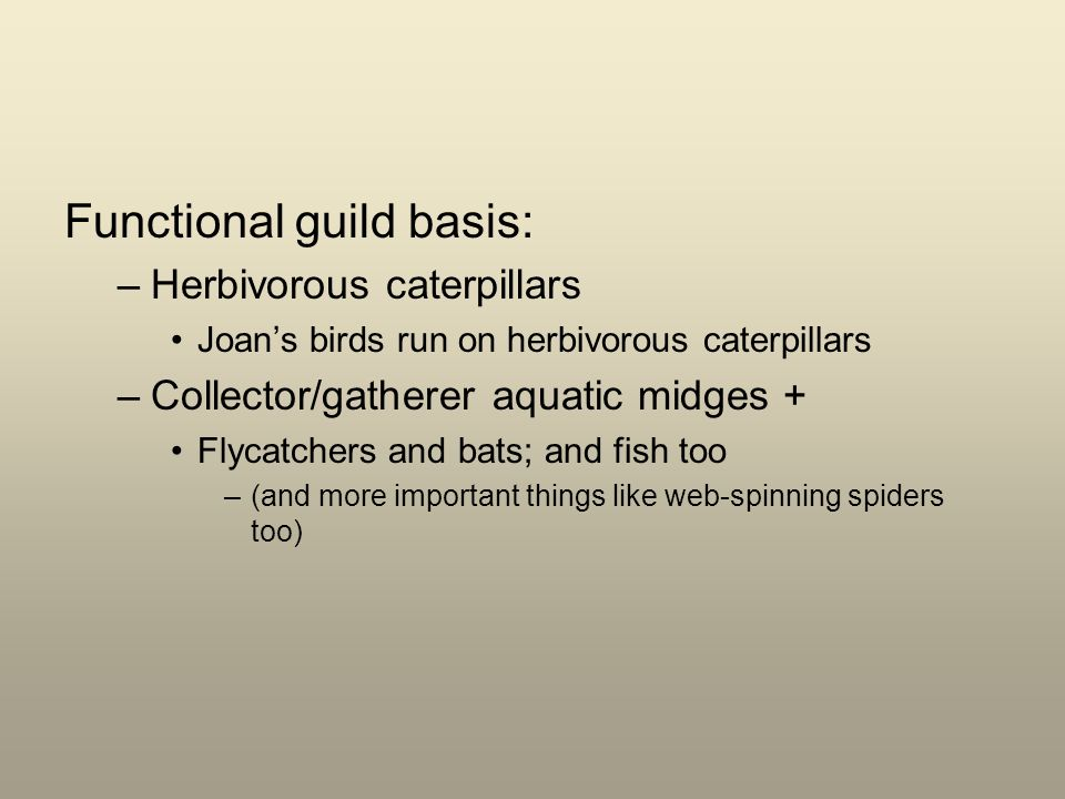 Functional guild basis: –Herbivorous caterpillars Joans birds run on herbivorous caterpillars –Collector/gatherer aquatic midges + Flycatchers and bats; and fish too –(and more important things like web-spinning spiders too)