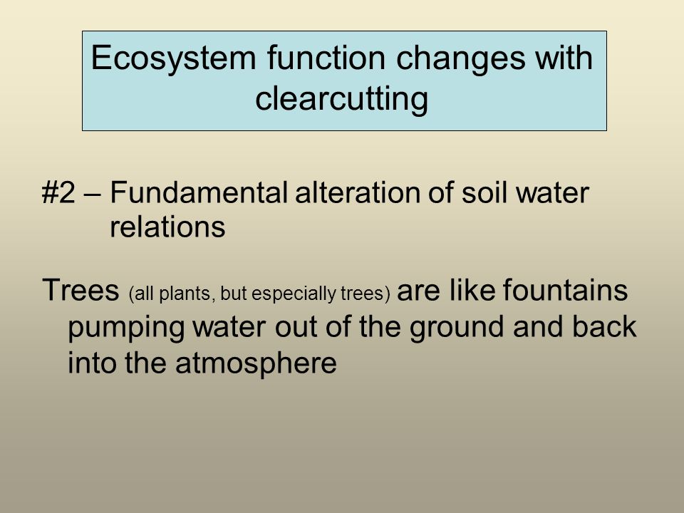 Ecosystem function changes with clearcutting #2 – Fundamental alteration of soil water relations Trees (all plants, but especially trees) are like fountains pumping water out of the ground and back into the atmosphere