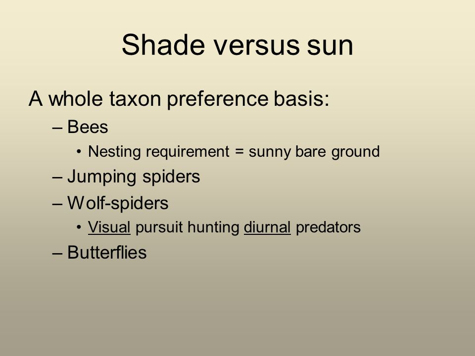 Shade versus sun A whole taxon preference basis: –Bees Nesting requirement = sunny bare ground –Jumping spiders –Wolf-spiders Visual pursuit hunting diurnal predators –Butterflies