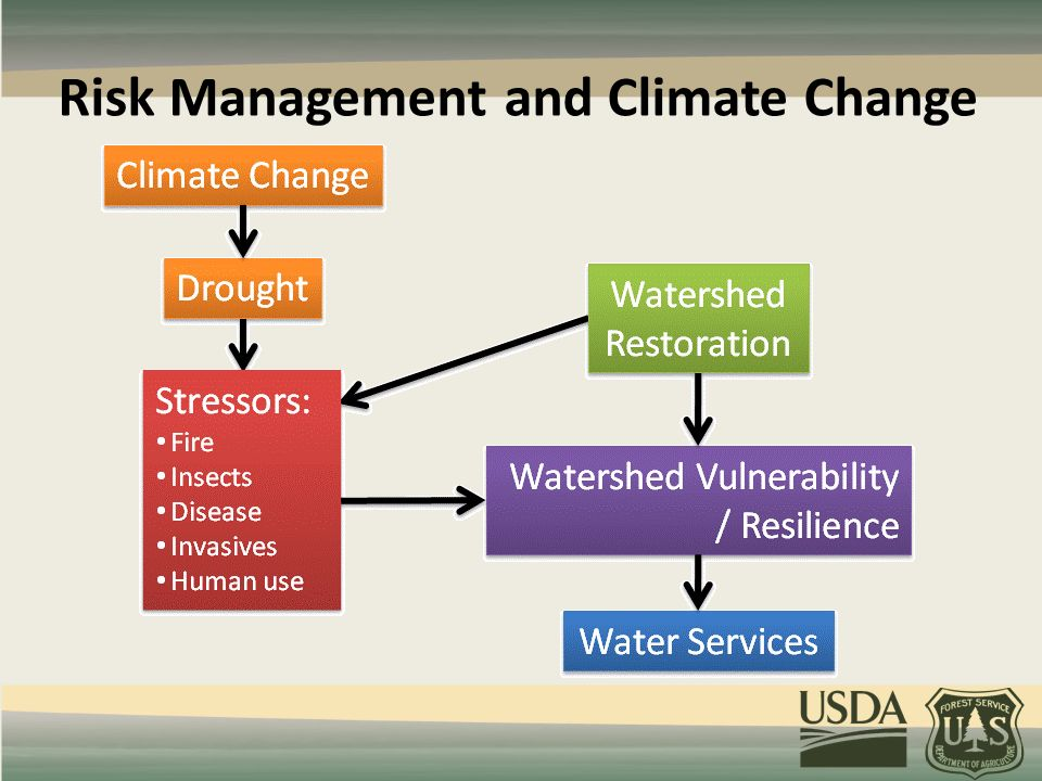 Risk Management and Climate Change
