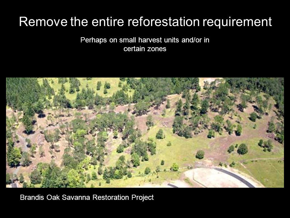 Remove the entire reforestation requirement Perhaps on small harvest units and/or in certain zones Brandis Oak Savanna Restoration Project