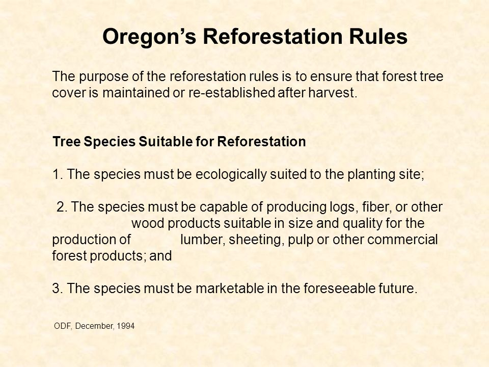 The purpose of the reforestation rules is to ensure that forest tree cover is maintained or re-established after harvest.