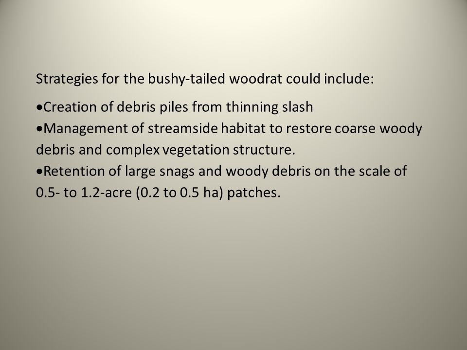 Strategies for the bushy-tailed woodrat could include: Creation of debris piles from thinning slash Management of streamside habitat to restore coarse woody debris and complex vegetation structure.