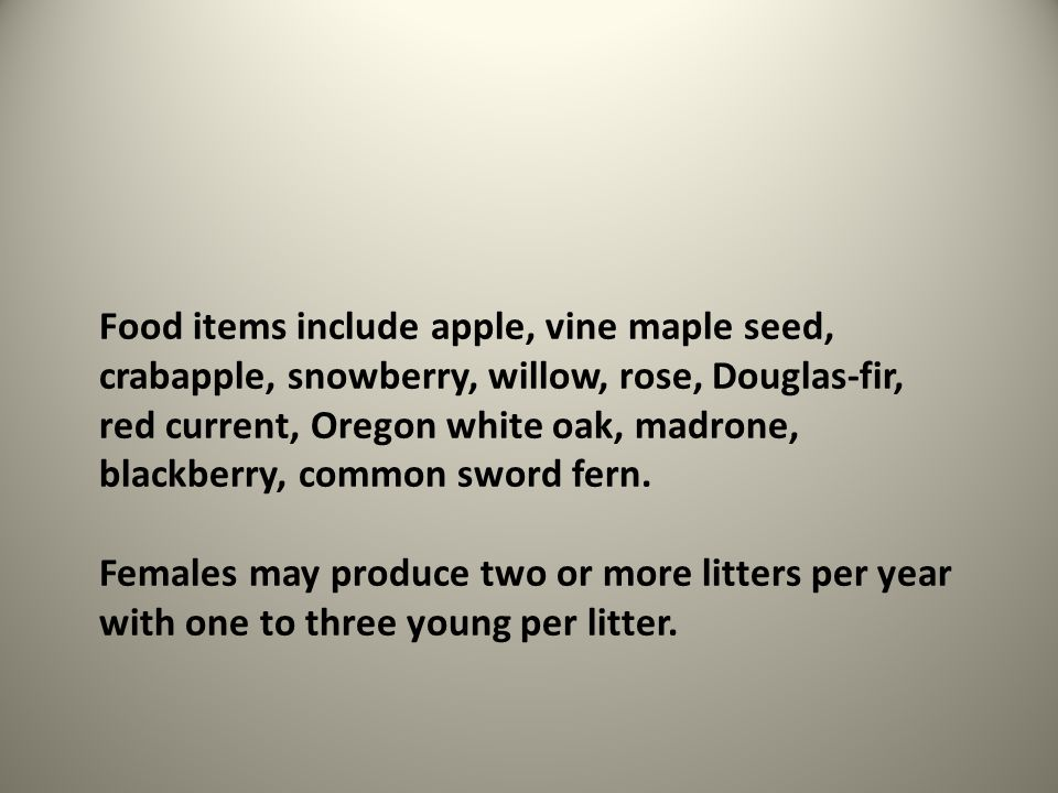 Food items include apple, vine maple seed, crabapple, snowberry, willow, rose, Douglas-fir, red current, Oregon white oak, madrone, blackberry, common sword fern.