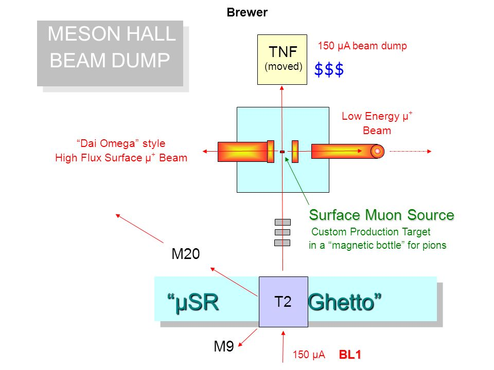 µSR Ghetto µSR Ghetto MESON HALL BEAM DUMP MESON HALL BEAM DUMP 150 µA beam dump BL1 Surface Muon Source Custom Production Target in a magnetic bottle for pions Dai Omega style High Flux Surface µ + Beam Low Energy µ + Beam 150 µA T2 TNF (moved) M9 M20 $$$ Brewer