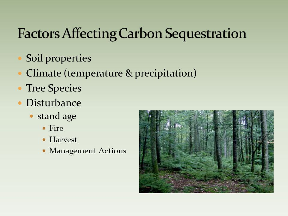 Soil properties Climate (temperature & precipitation) Tree Species Disturbance stand age Fire Harvest Management Actions