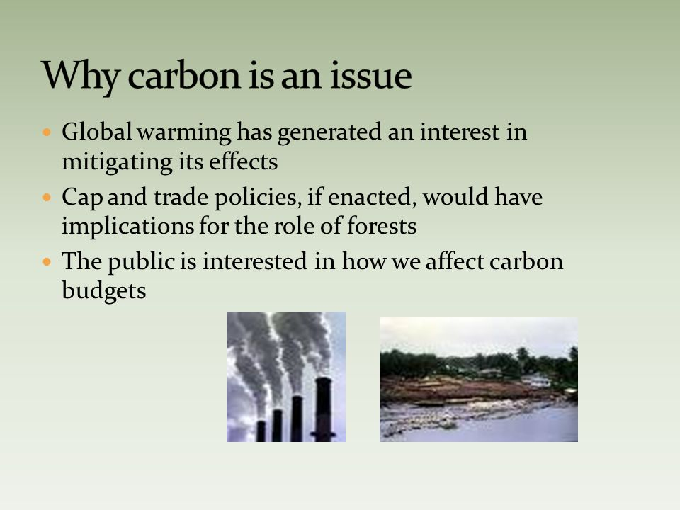 Global warming has generated an interest in mitigating its effects Cap and trade policies, if enacted, would have implications for the role of forests The public is interested in how we affect carbon budgets