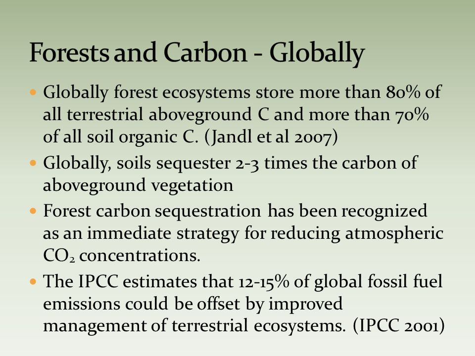 Globally forest ecosystems store more than 80% of all terrestrial aboveground C and more than 70% of all soil organic C.