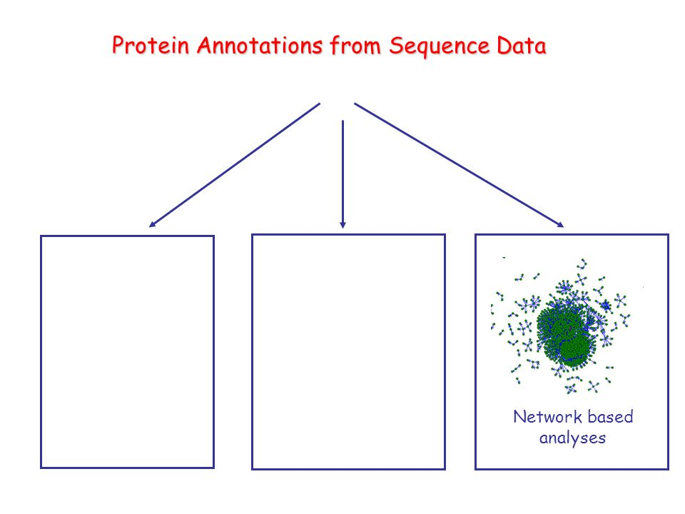 Protein Annotations from Sequence Data Network based analyses