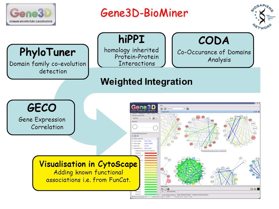 Gene3D-BioMiner hiPPI homology inherited Protein-Protein Interactions CODA Co-Occurance of Domains Analysis GECO Gene Expression Correlation PhyloTuner Domain family co-evolution detection Visualisation in CytoScape Adding known functional associations i.e.