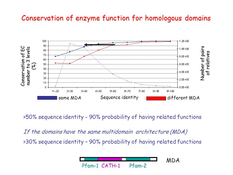 Conservation of enzyme function for homologous domains Conservation of EC number to 3 levels (%) Sequence identity same MDA CATH-1Pfam-1Pfam-2 MDA different MDA Number of pairs of relatives >50% sequence identity - 90% probability of having related functions If the domains have the same multidomain architecture (MDA) >30% sequence identity – 90% probability of having related functions