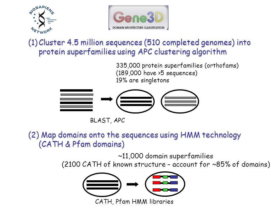 (1)Cluster 4.5 million sequences (510 completed genomes) into protein superfamilies using APC clustering algorithm (2) Map domains onto the sequences using HMM technology (CATH & Pfam domains) 335,000 protein superfamilies (orthofams) (189,000 have >5 sequences) 19% are singletons ~11,000 domain superfamilies (2100 CATH of known structure – account for ~85% of domains) BLAST, APC CATH, Pfam HMM libraries