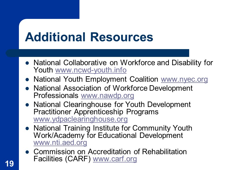 19 Additional Resources National Collaborative on Workforce and Disability for Youth   National Youth Employment Coalition   National Association of Workforce Development Professionals   National Clearinghouse for Youth Development Practitioner Apprenticeship Programs     National Training Institute for Community Youth Work/Academy for Educational Development     Commission on Accreditation of Rehabilitation Facilities (CARF)