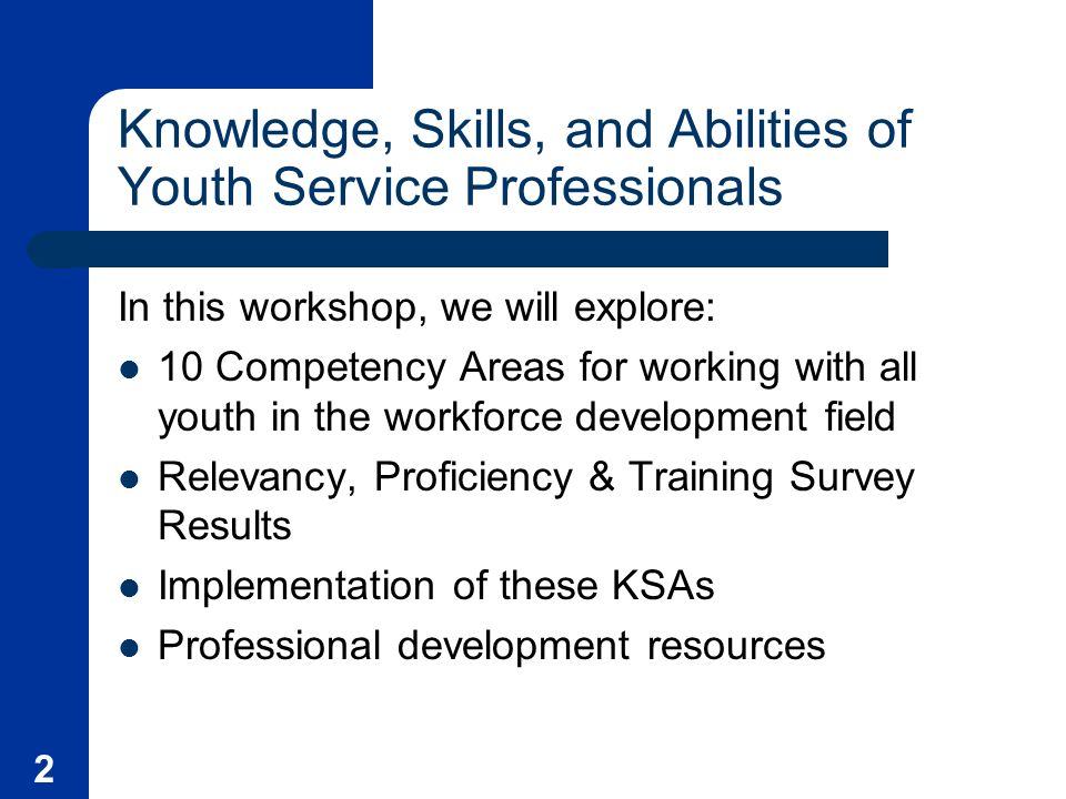 2 Knowledge, Skills, and Abilities of Youth Service Professionals In this workshop, we will explore: 10 Competency Areas for working with all youth in the workforce development field Relevancy, Proficiency & Training Survey Results Implementation of these KSAs Professional development resources