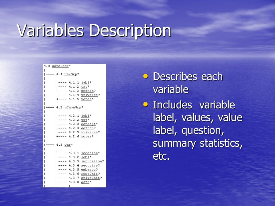 Variables Description Describes each variable Describes each variable Includes variable label, values, value label, question, summary statistics, etc.