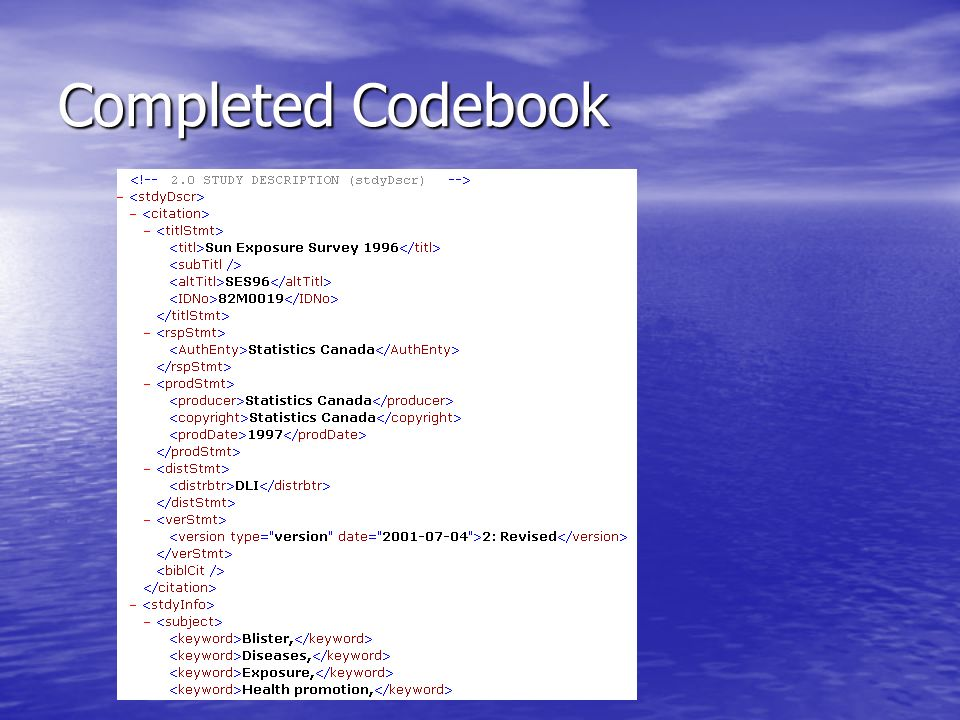 Completed Codebook