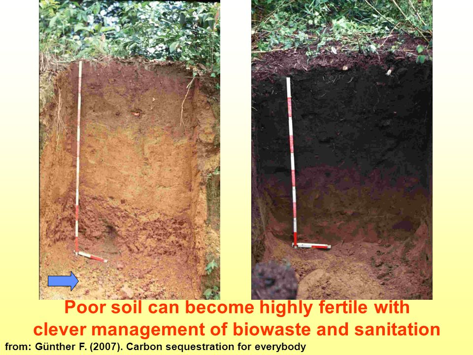 Naturally very poor tropical soil degrades very soon with lack of organic matter The same soil: highly fertile and carbon rich over many generations long ago with - lactofermented vermicomposted biowaste and faecal matter - 10% charcoal Terra Preta Poor soil can become highly fertile with clever management of biowaste and sanitation from: Günther F.