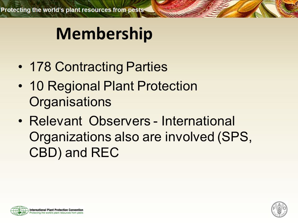 178 Contracting Parties 10 Regional Plant Protection Organisations Relevant Observers - International Organizations also are involved (SPS, CBD) and REC Membership