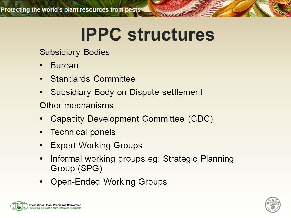 Subsidiary Bodies Bureau Standards Committee Subsidiary Body on Dispute settlement Other mechanisms Capacity Development Committee (CDC) Technical panels Expert Working Groups Informal working groups eg: Strategic Planning Group (SPG) Open-Ended Working Groups IPPC structures