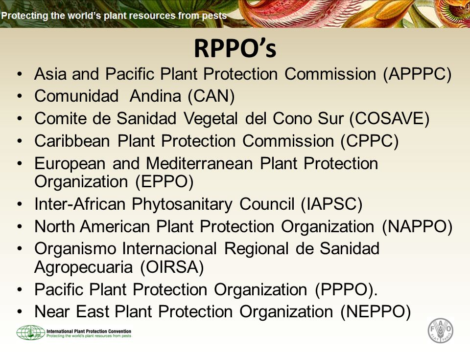 Asia and Pacific Plant Protection Commission (APPPC) Comunidad Andina (CAN) Comite de Sanidad Vegetal del Cono Sur (COSAVE) Caribbean Plant Protection Commission (CPPC) European and Mediterranean Plant Protection Organization (EPPO) Inter-African Phytosanitary Council (IAPSC) North American Plant Protection Organization (NAPPO) Organismo Internacional Regional de Sanidad Agropecuaria (OIRSA) Pacific Plant Protection Organization (PPPO).