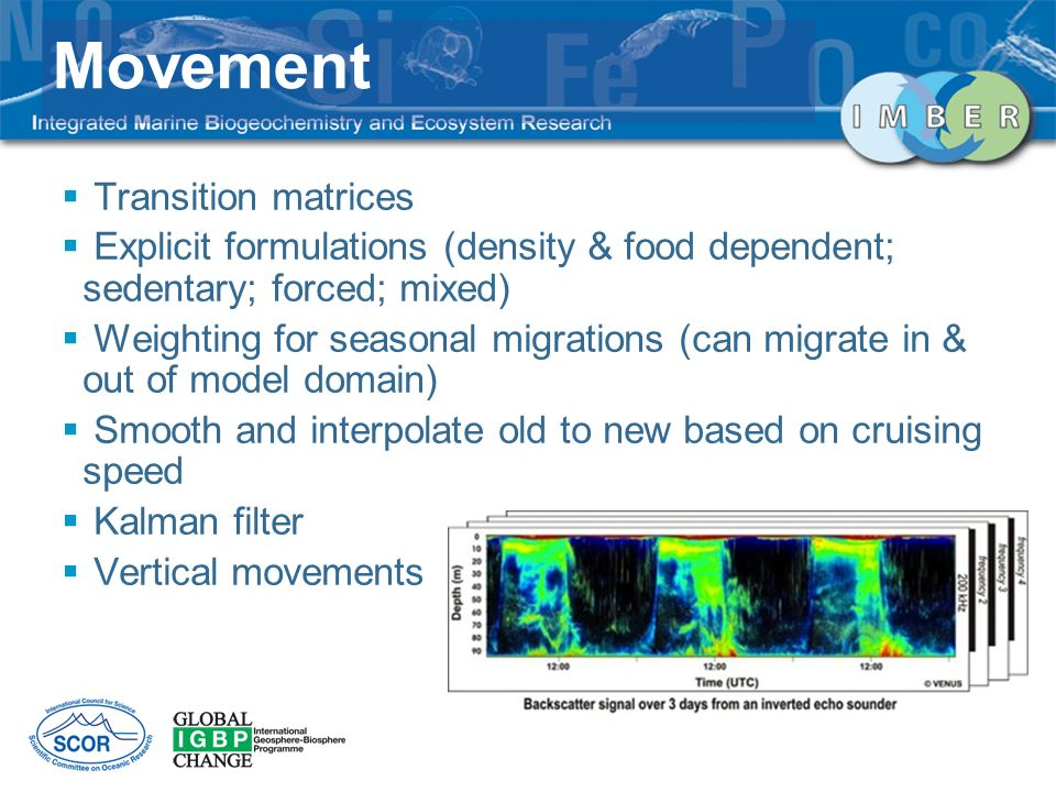 Transition matrices Explicit formulations (density & food dependent; sedentary; forced; mixed) Weighting for seasonal migrations (can migrate in & out of model domain) Smooth and interpolate old to new based on cruising speed Kalman filter Vertical movements Movement