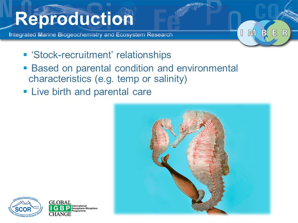 Stock-recruitment relationships Based on parental condition and environmental characteristics (e.g.