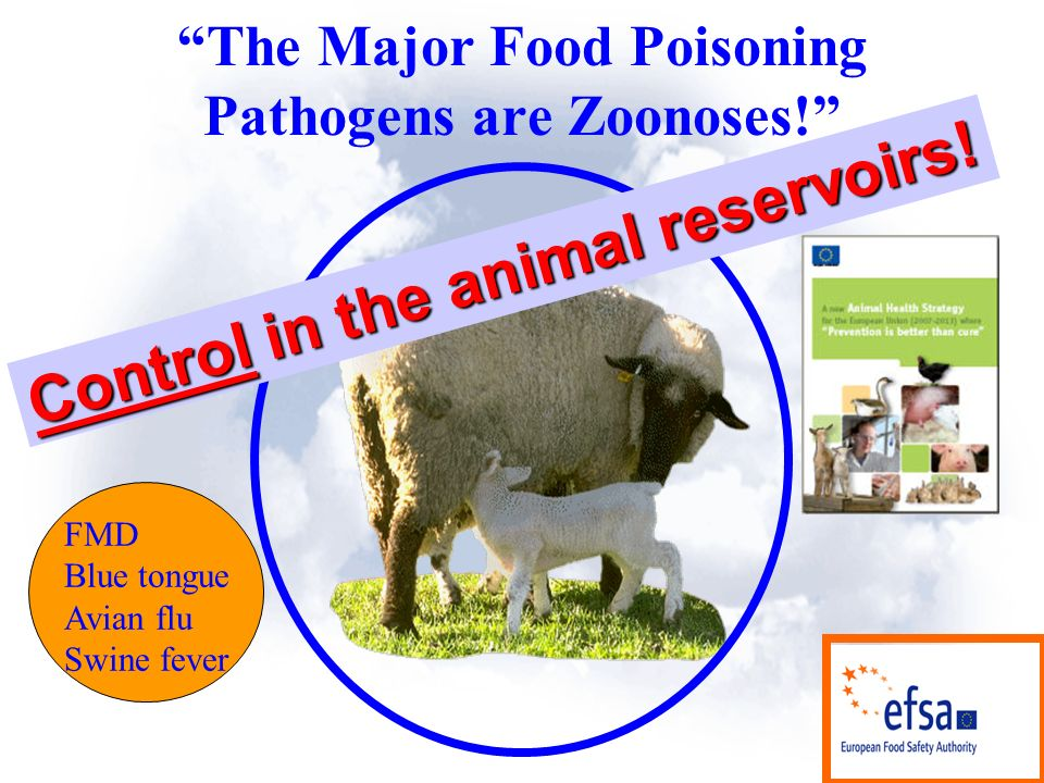 The Major Food Poisoning Pathogens are Zoonoses. Control in the animal reservoirs.