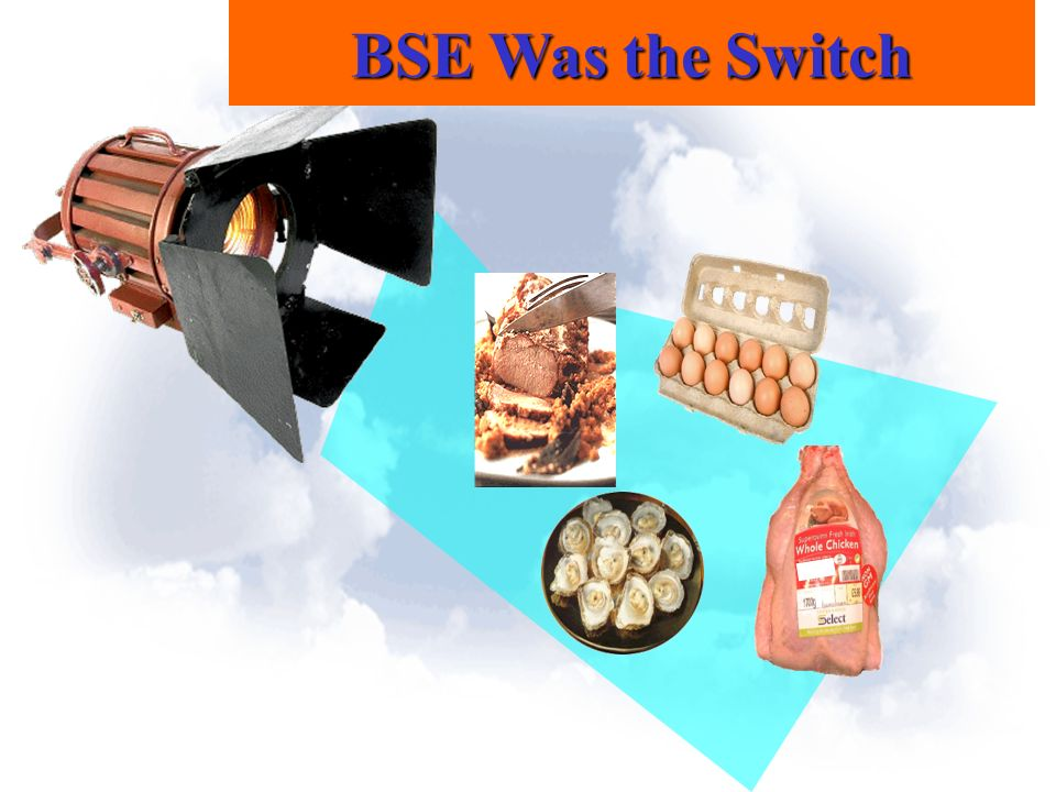 BSE Was the Switch