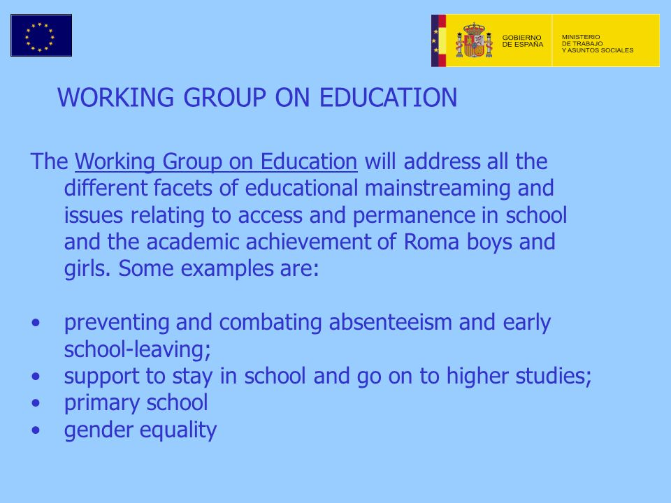 WORKING GROUP ON EDUCATION The Working Group on Education will address all the different facets of educational mainstreaming and issues relating to access and permanence in school and the academic achievement of Roma boys and girls.